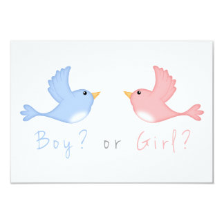 Pink and Blue Birds  Baby Gender Reveal Party Card
