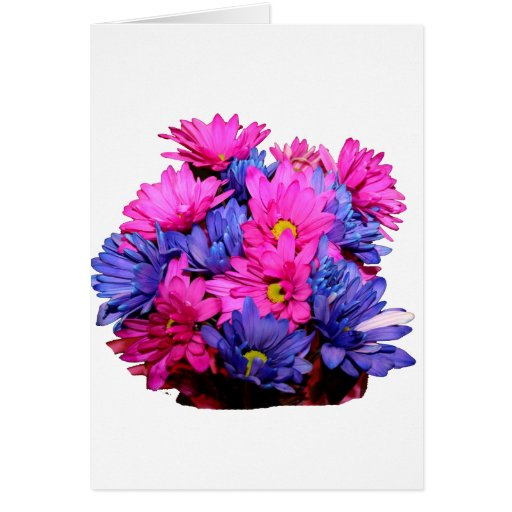 Pink and Blue Daisy Flower Bouquet Image Greeting Cards