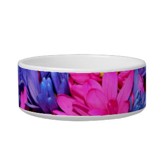 Pink and Blue Daisy Flower Bouquet Image Cat Water Bowl