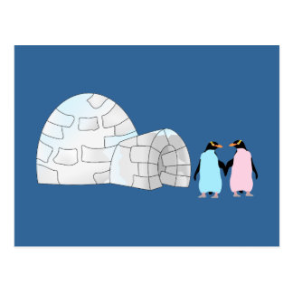 Pink and Blue penguins at igloo Postcard