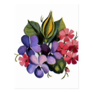 Pink and Blue Posies Postcard