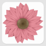 Pink and Brown Daisy Stickers