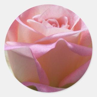 Pink and Cream Rose Envelope Seals