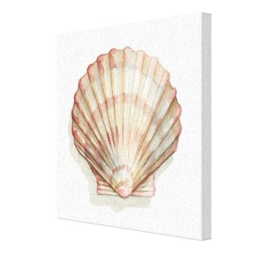Beach Themed Pink and Cream Seashell Canvas Print