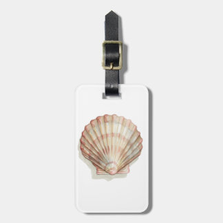 Pink and Cream Seashell Luggage Tag