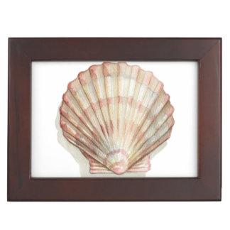 Pink and Cream Seashell Memory Box