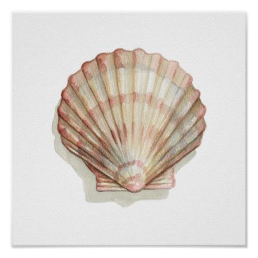 Beach Themed Pink and Cream Seashell Poster