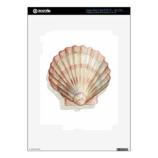 Pink and Cream Seashell Skin For iPad 3