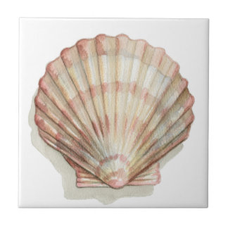 Pink and Cream Seashell Small Square Tile