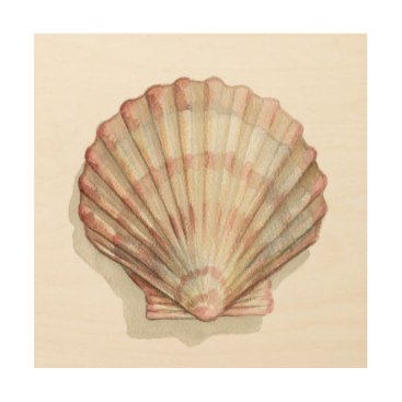 Beach Themed Pink and Cream Seashell Wood Print