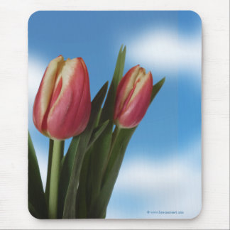 Pink and Cream Tulips / Blue Sky Floral Mouse Pad