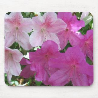 Pink and Fushia Azaleas  IMG_0777 Mouse Pad