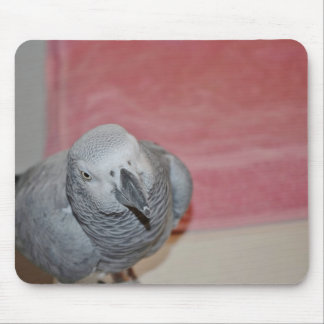 Pink and Gray African Grey Parrot Mouse Pad