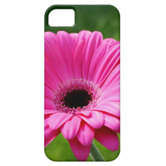 Pink and Green Gerbera Daisy iPhone SE/5/5s Case