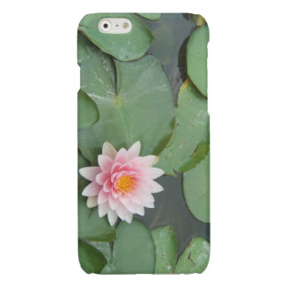 Pink and Green Lily Pad Pretty Floral Womens Glossy iPhone 6 Case