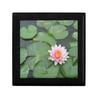 Pink and Green Lily Pad Pretty Photograph Jewelry Box