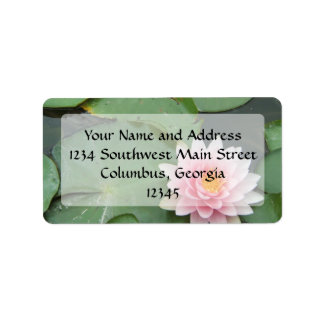 Pink and Green Lily Pad Pretty Photograph Address Label