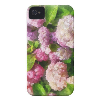 Pink And Lavender Hydrangea Blackberry Bold Covers