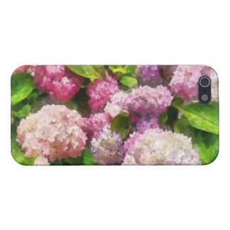 Pink And Lavender Hydrangea Cover For iPhone 5