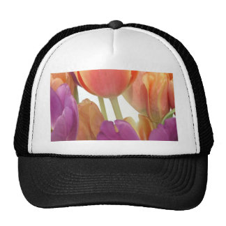 Pink and Lavender Tulips Hat