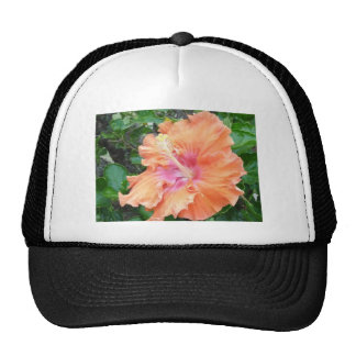 Pink and Orange Hibiscus  Products Trucker Hat