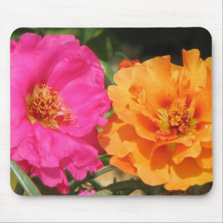 Pink  and Orange Portulaca Mouse Pad