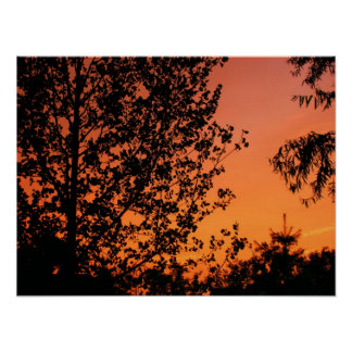 Pink and Orange Sky Poster