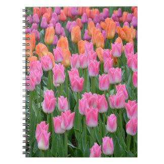 Pink and orange tulip garden notebook