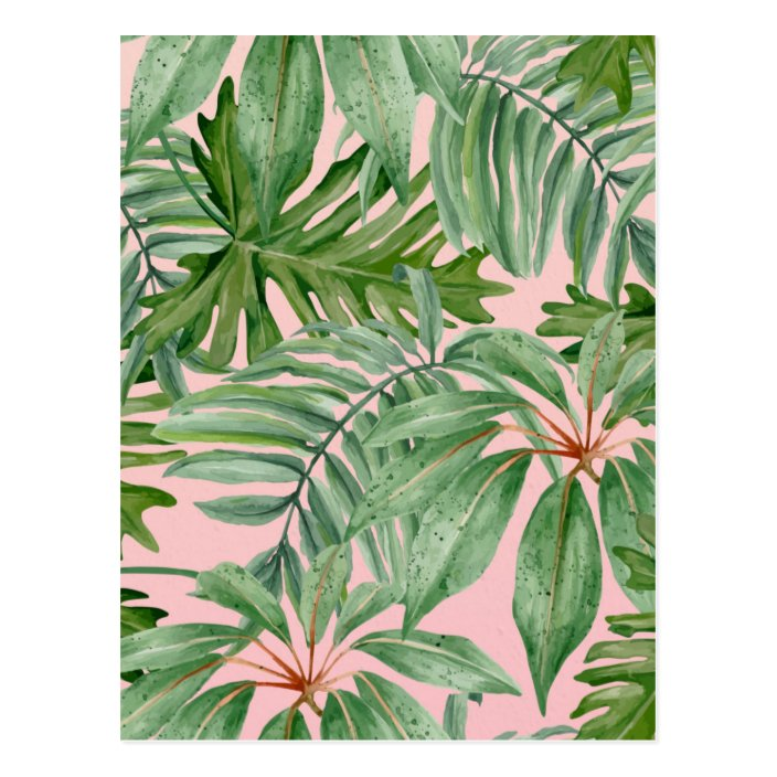 Pink And Palm Leaf Tropical Floral Pattern Postcard Zazzle Com