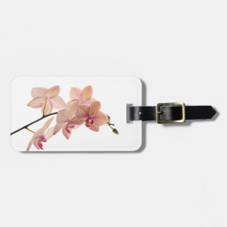 Pink and Peach Dendrobium Orchid - Customized Luggage Tag