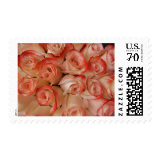 Pink and Peach Roses Postage