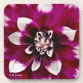 Pink and Purple Flower Cork Coaster