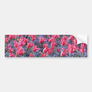 Pink and purple flower field bumper sticker