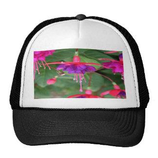 Pink and Purple Fuschia Flowers Trucker Hat