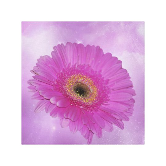 Pink and purple Gerber daisy Canvas Print