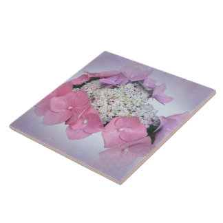 Pink and Purple Lace Cap Hydrangea Flowers Tile