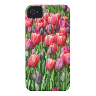 Pink and purple tulip garden print iPhone 4 case