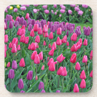 Pink and purple tulips spring garden drink coaster