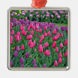 Pink and purple tulips spring garden metal ornament