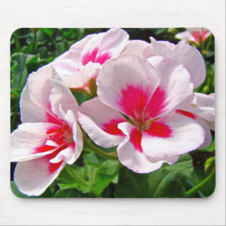 Pink and Red Geranium Floral Mouse Pad