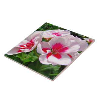 Pink and Red Geranium Floral Tile