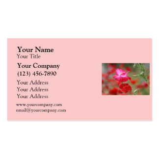 Pink and Red Poppies Photo Business Card