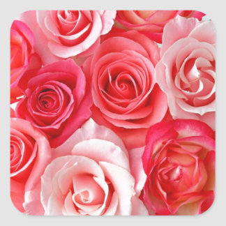 Pink and Red Roses Square Sticker