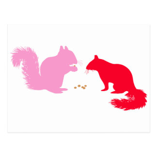 Pink and Red Squirrels Postcard
