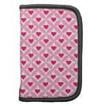 Pink and Red Valentine's Day Hearts Pattern Organizer
