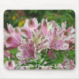 Pink and White Alstromeria Mousepad