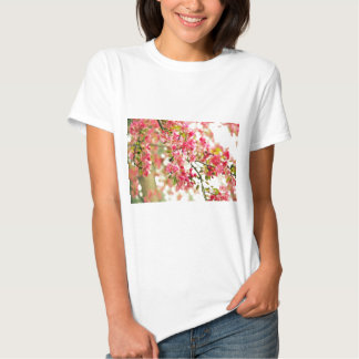 Pink and White Apple Blossoms Tee Shirt