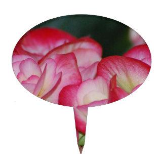 Pink and White Begonia Cake Pick