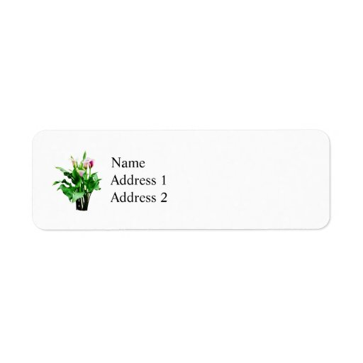 Pink and White Calla Lilies Return Address Label
