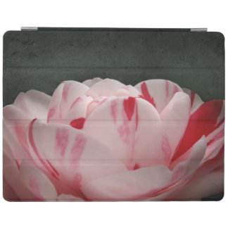 Pink and White Camellia iPad Smart Cover